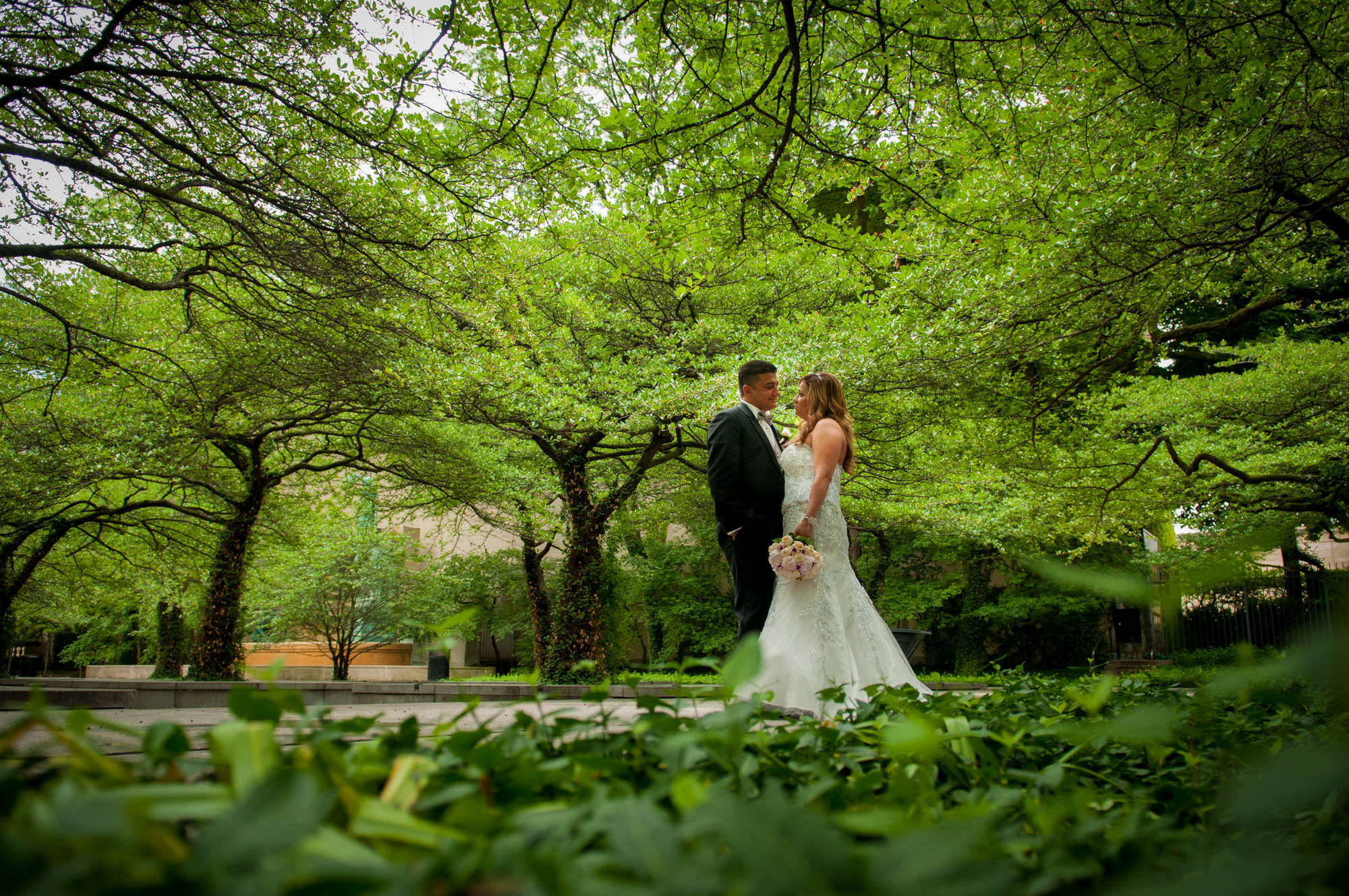Bride Groom The Art Institute South Garden Trees